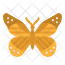 Butterfly Insect Moths Icon