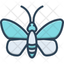 Butterfly Dragonfly Environment Icon