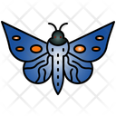 Butterfly Rainforest Butterflies Icon