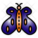 Butterfly Insect Natural Icon