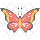 Butterfly Colorful Beautiful Icon