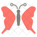 Butterfly Spring Insect Icon