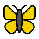 Butterfly Beautiful Nature Icon