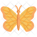 Butterfly Animal Wings Icon