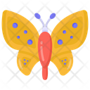 Insect Butterfly Moth Icon