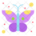 Butterfly Insect Moth Icon