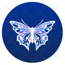 Butterfly Night Insect Icon