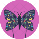 Butterfly Insect Colorful Icon