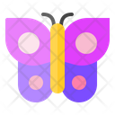 Spring Butterfly Beautiful Icon