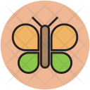 Butterfly Insect Cartoon Icon