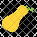 Butternut Icon