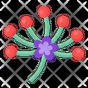 Byblis Plant Icon