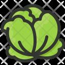 Cabbage Organic Lettuce Icon