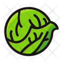 Cabbage Vegetable Organic Icon