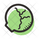 Cabbage Lettuce Food Icon