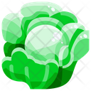Cabbage Vegetable Organic Icon