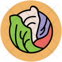 Cabbage Flower Vegetable Icon