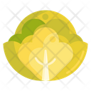 Cabbage Vegetable Cabbage Flower Icon