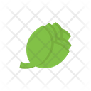 Cabbage Vegetable Broccoli Icon