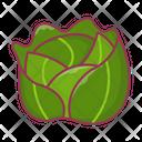 Cabbage Broccoli Vegetable Icon
