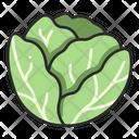 Plant Fresh Vegetable Icon