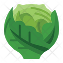 Cabbage Health Vegetarian Icon