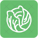 Cabbage Vegetable Diet Icon