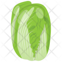 Cabbage Flower Salad Icon
