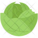 Cabbage Food Supermarket Icon
