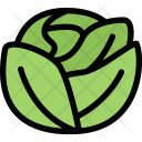 Cabbage Vegetables Fruit Icon