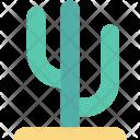 Cactaceae Cactus Plant Icon