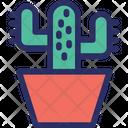 Cacti Cacto Cactus Icon