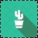 Cactus Nature Plant Icon