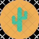 Cactus Desert Plant Icon