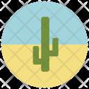 Cactus Sand Desert Icon