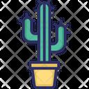 Cactus Cactus Plant Garden Plant Icon