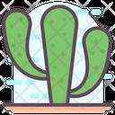 Cactus Plantation Desert Plant Icon