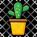 Cactus Succulent Plant Desert Plant Icon