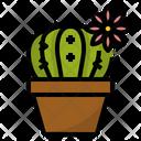 Cactus Ornamental Plant Icon