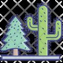 Cactus Desert Plant Fir Tree Icon