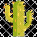 Cactus Cactaceae Plant Icon