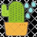 Cactus Succulent Gardening Icon