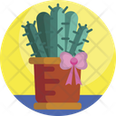 Gifts Gift Cactus Icon
