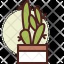 Fig Cactus Icon
