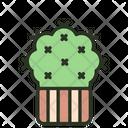 Cactus Green Garden Icon