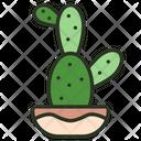 Cactus Nature Green Icon