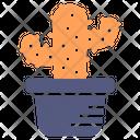 Cactus Pot Plant Icon