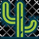 Cactus Plant Succulent Icon