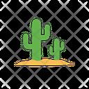 Cactus Plant Desert Icon