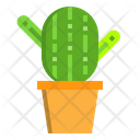 Cactus Cactus Plant Cactus Pot Icon